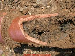 Clay Pipes Are A Staple Of The South